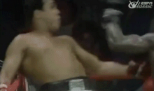 Muhammad Ali Dodging 21 Punches in 10 Seconds Is the Best Sports GIF You'll See All Day (GIF)