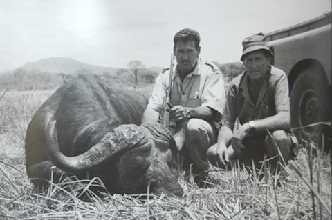 7 ted williams african cape buffalo - athletes who are hunters