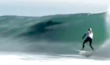 Pod of Dolphins Interrupts Surfing Competition (Video)