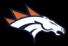 http://www.totalprosports.com/wp-content/uploads/2014/02/Denver-Broncos-400x400.png
