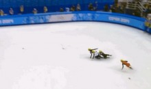 2014 Sochi Olympics: Chinese Speed Skater Wins Gold After Everyone Else Falls Down (GIF)