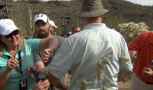 Golf Fan Attacked by Jumping Cactus While Dodging Errant Rory McIlroy Shot (Video)