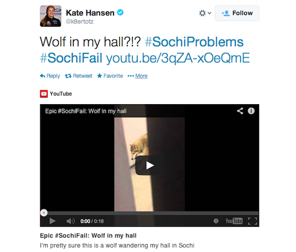 kate hansen dog tweet