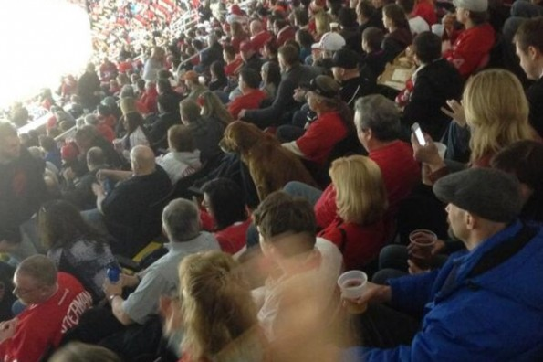 Dog At Red Wings Game