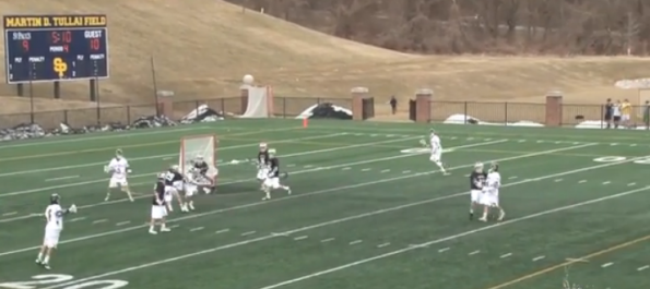 Great Lacrosse Goal