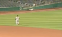 Giants' Minor Leaguer Darren Ford Stretchered Off After Diving Head First Into a Wall (Video)