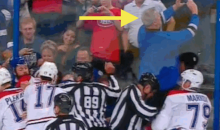 Lightning Fan Snaps Sweet Selfie with Hockey Scrum (GIF)