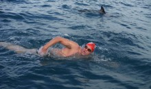 Long-Distance Swimmer Protected From Sharks by Dolphins (Pics and Video)