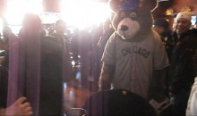 Guy Gets Punched by Cubs Mascot After Taking Off His Head (Video)