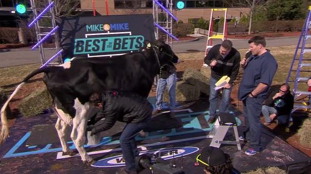 Mike n Mike milk cow