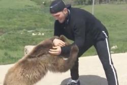 Khabib Nurmagomedov Wrestling Bear