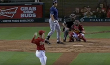 Bird Narrowly Avoids Getting Blown Up By a Pitch in Padres-DBacks Game