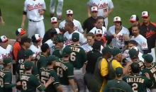 Benches Clear After Orioles' Manny Machado Throws His Bat at Oakland A's Third Baseman (Video)