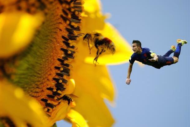 robin van persie goal photoshop 7