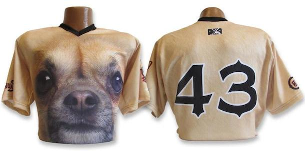 2 el paso chihuahuas chihuahua face jersey - crazy minor league baseball jerseys