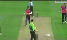 Cricket Player Ryan Higgins Clocks a Seagull with a Hit Ball (Video)