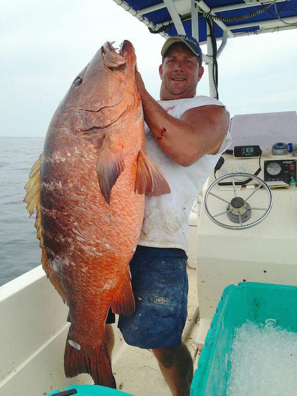 Alabama Fisherman Lands 85-Pound Snapper With 30-Pound