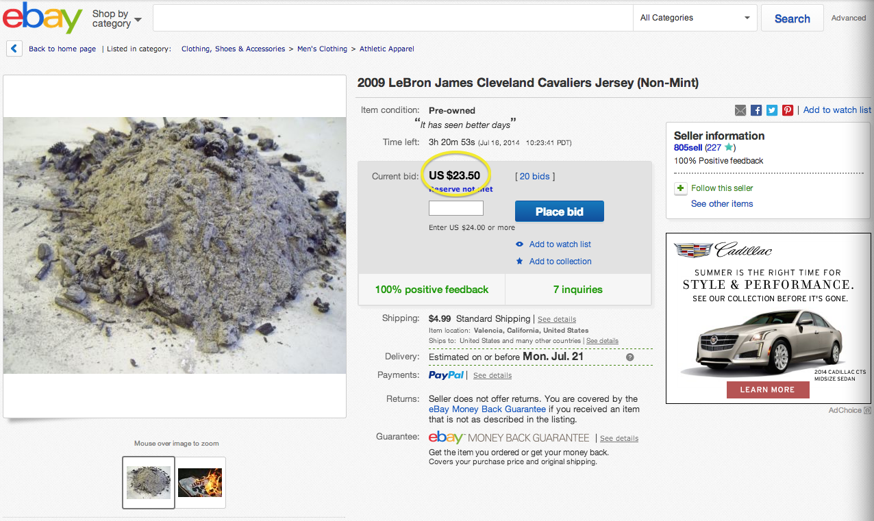 lebron jersey ashes on ebay