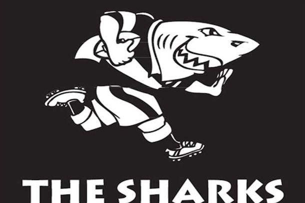 3 KwaZulu-Natal Sharks - sports teams named after sharks