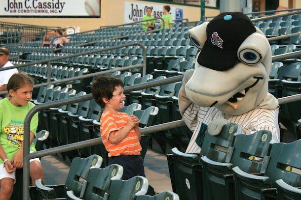 7 jupiter hammerheads - sports teams named after sharks