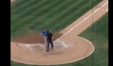Minor League Manager Checks Off Every 'Angry Manager' Cliche During Fight With Ump (Video)