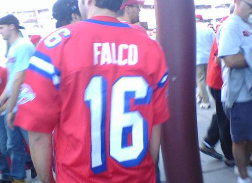 falco jersey - best customized fan jerseys