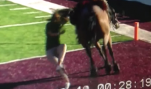 New Mexico State Horse Runs Over New Mexico State Student Prior to Football Game (Video)