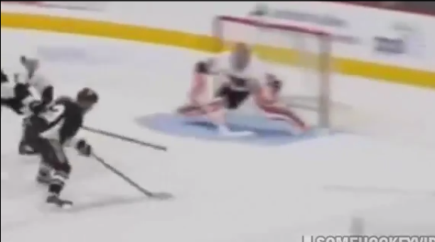 AHL hockey goal