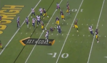 Steelers Trick Play Culminates in Antonio Brown Touchdown Pass (Video)