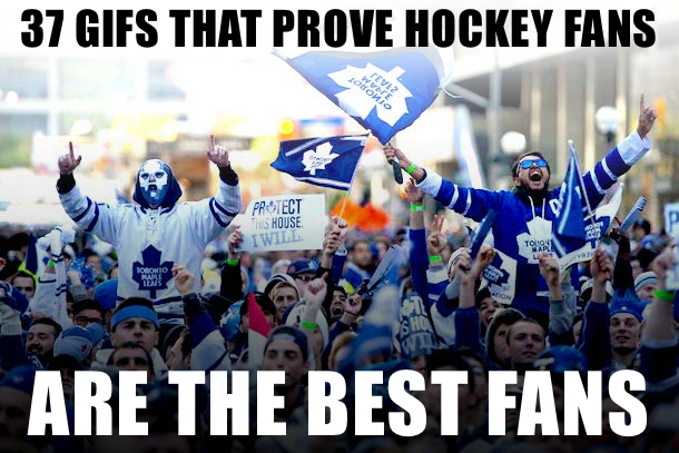 37 Gifs That Prove Hockey Fans Are The Best Fans Total Pro Sports