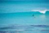 http://www.totalprosports.com/wp-content/uploads/2014/11/shark-stalking-a-surfer-3-520x345.png