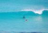 http://www.totalprosports.com/wp-content/uploads/2014/11/shark-stalking-a-surfer-header-520x346.png