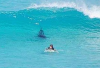 http://www.totalprosports.com/wp-content/uploads/2014/11/shark-stalking-a-surfer-header1.png