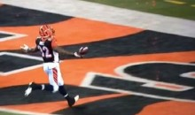 Jeremy Hill Nearly Fumbled Away His 85-Yard TD Run at the Goal Line (Video)