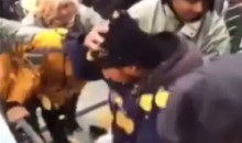 Jets Fan Throws Nachos and Cheese at Patriots Fan (Video)