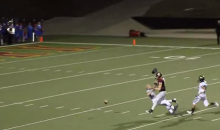 Oblivious Referee Decked By Wide Receiver, Prevents Sure TD (GIF)