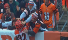 Bengals' Jeremy Hill Jumps Into Cleveland Fans To Celebrate And Gets Pushed Back (Video)
