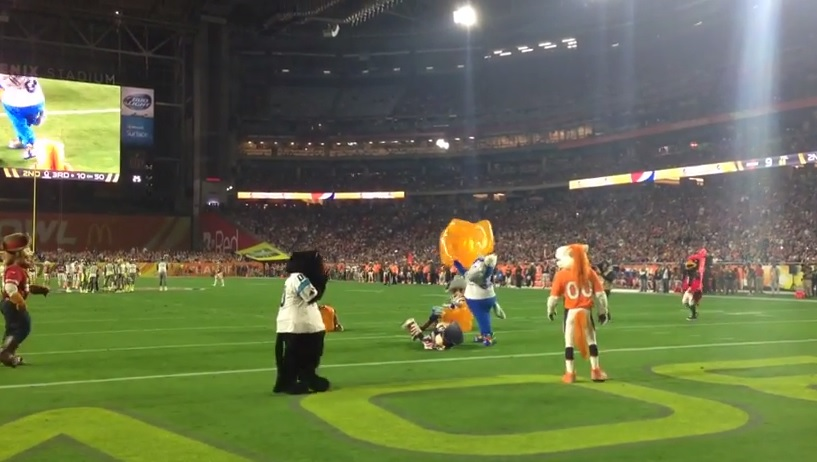 Colts Mascot Beats Patriots Mascot With Inflatable Chair