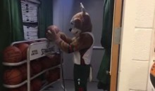 Milwaukee Bucks Mascot Pokes Fun at Pats' DeflateGate (Video)