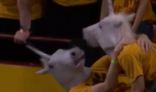 ASU Fans Distract Free Throw Shooters with an Erotic Unicorn Display (Video)