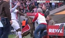 Cologne's Anthony Ujah Celebrates Goal By Yanking Goat Mascot's Horns (Video)