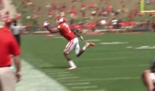 Clemson's Mike Williams Makes Insane One-Handed Grab (Video)