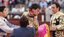 "Gruesome Injury: Bullfighter in ""Grave Condition"" After Being Gored in the Jugular (Video + Pics)"