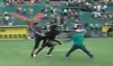 Honduran Field Invader Takes Kung Fu Kick to His Honduran Face (Video)