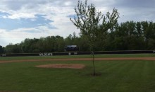 Epic Senior Prank: Kids in Small Town Ohio Plant 25-Foot Tree in the Middle of the High School's Baseball Field (Pic)