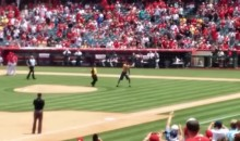 Fan Runs Onto Field, Throws Pitch at Angels-Mariners Game (Video)