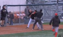 Managers Brawl During Alaskan Baseball Game (Video)