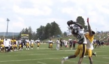 Martavis Bryant Made the First Amazing Catch of Training Camp (Video)