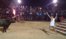 Man Takes on Bull with Flaming Horns. It Doesn't Go Well. (Video)