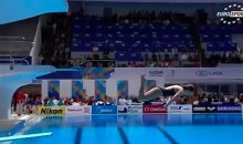 This Might Be the Worst Competition Dive Ever (Video)